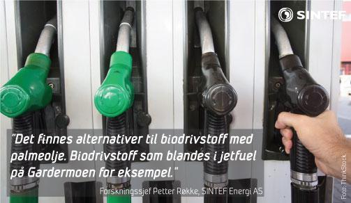 biodrivstoff uten palmeolje