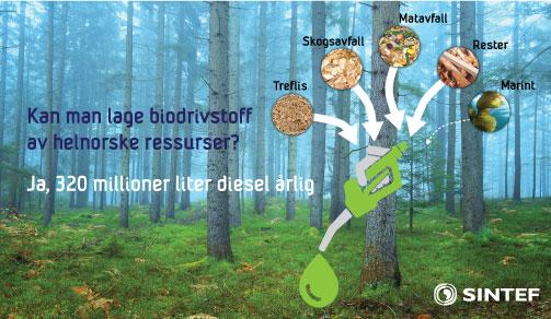 kan man lage norsk biodrivstoff