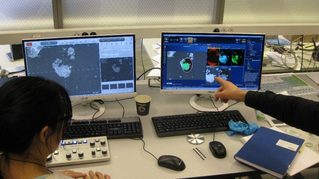 Det diskuteres hva man ser i elektronmikroskopet og elementanalysen.
