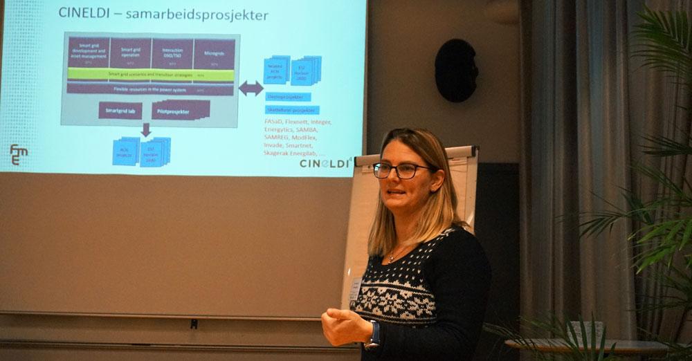 Ane T Brunvoll, Norges Forskningsråd
