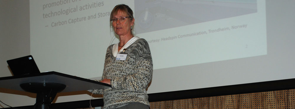 Åse Slagtern, Special Advisor, Research Council of Norway