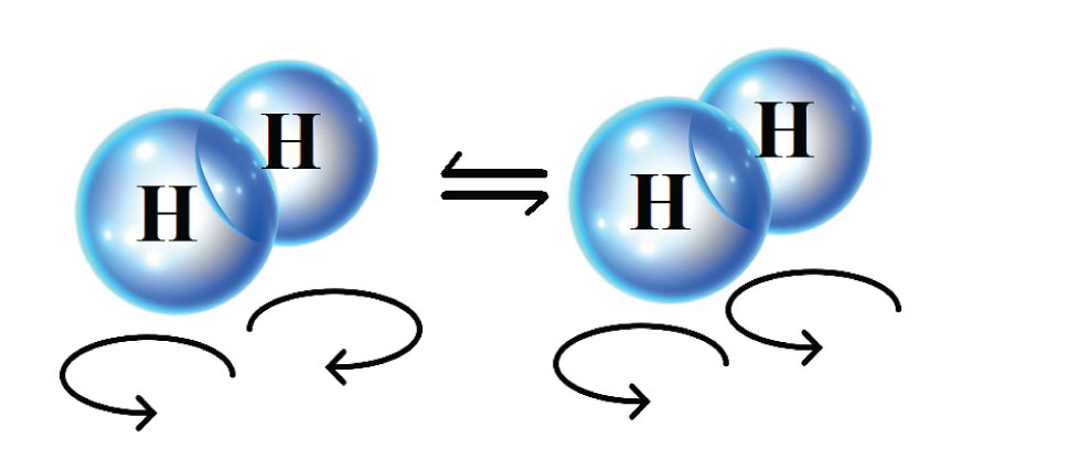 The two spin isomers of hydrogen, where the protons of the hydrogen molecule spin in opposite directions (para-hydrogen, to the left) or the same direction (ortho-hydrogen, to the right