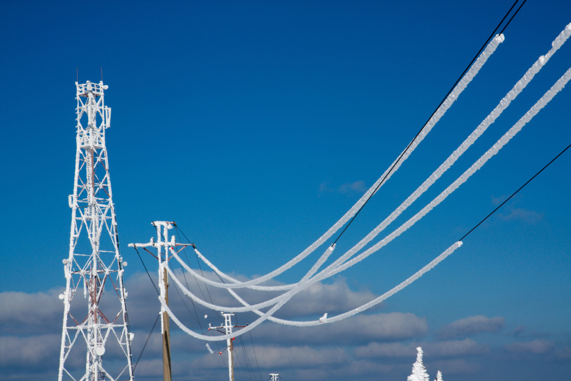 Snow weighing down a powerline. If it is not removed, a fault may occur