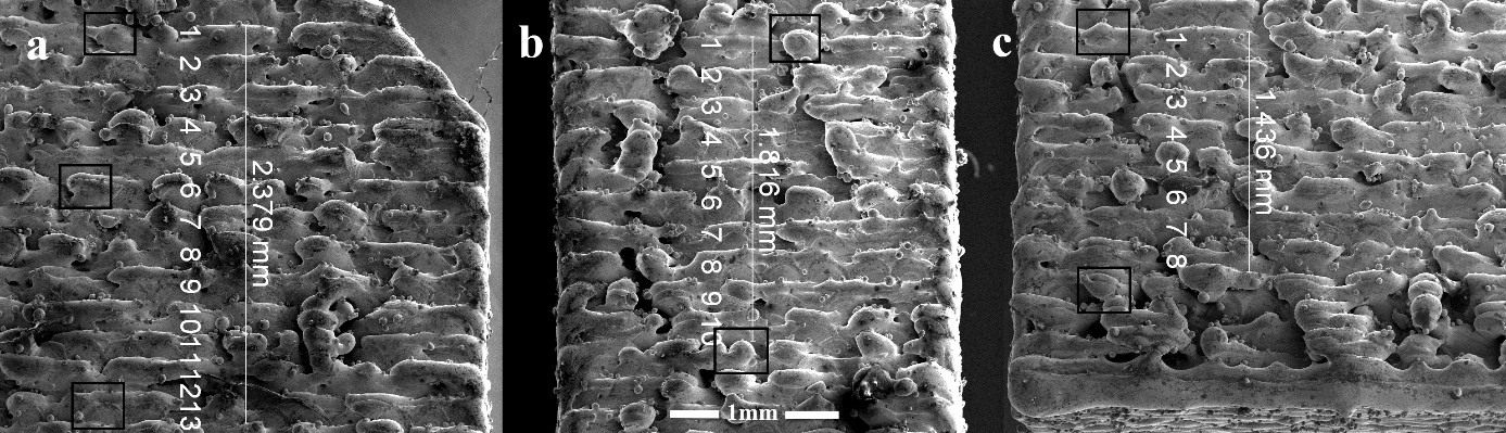 Figure 6 – Surface roughness on additively manufactured metal structure (Edit:Figure may be rotated 90° if desired)