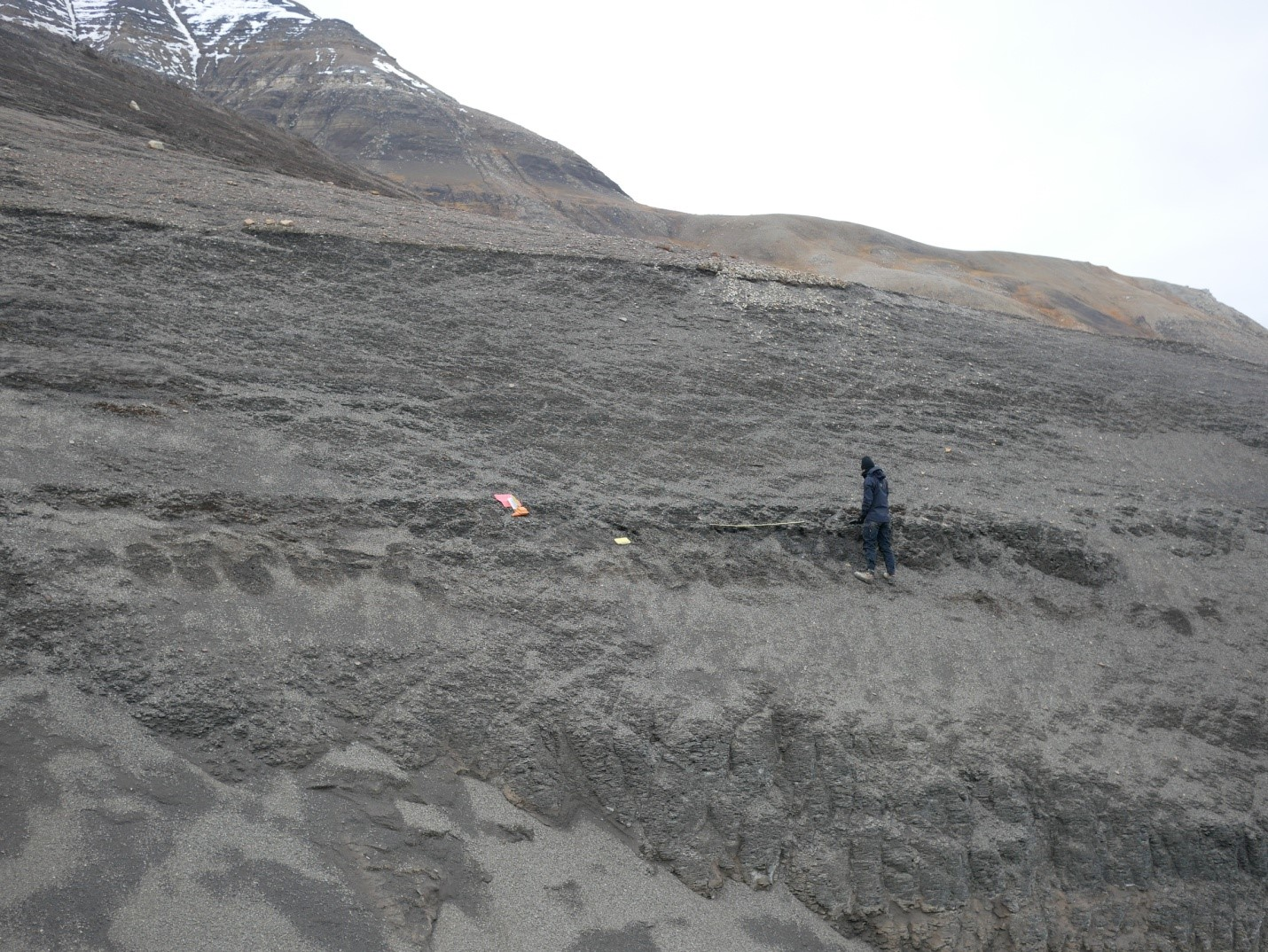 MSc student Karoline Løvlie systematically measuring fracture orientation and spacing in the upper Agardhfjellet Formation. caprock integrity