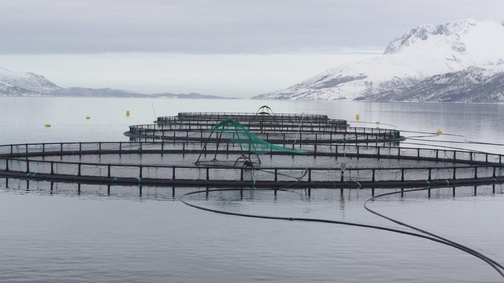 Oppdrettsanlegg i Norge