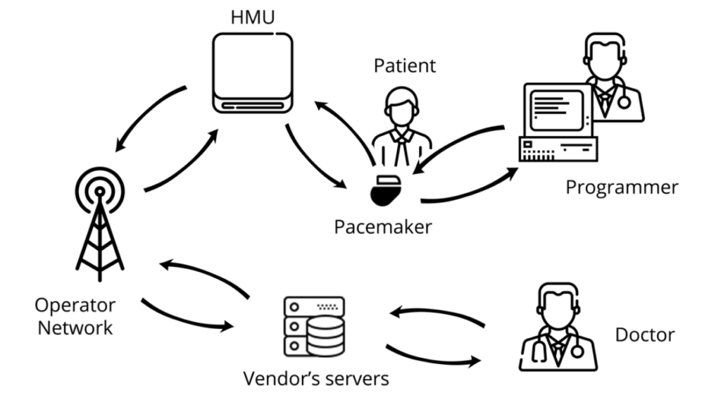 Diagram of the pacemaker ecosystem