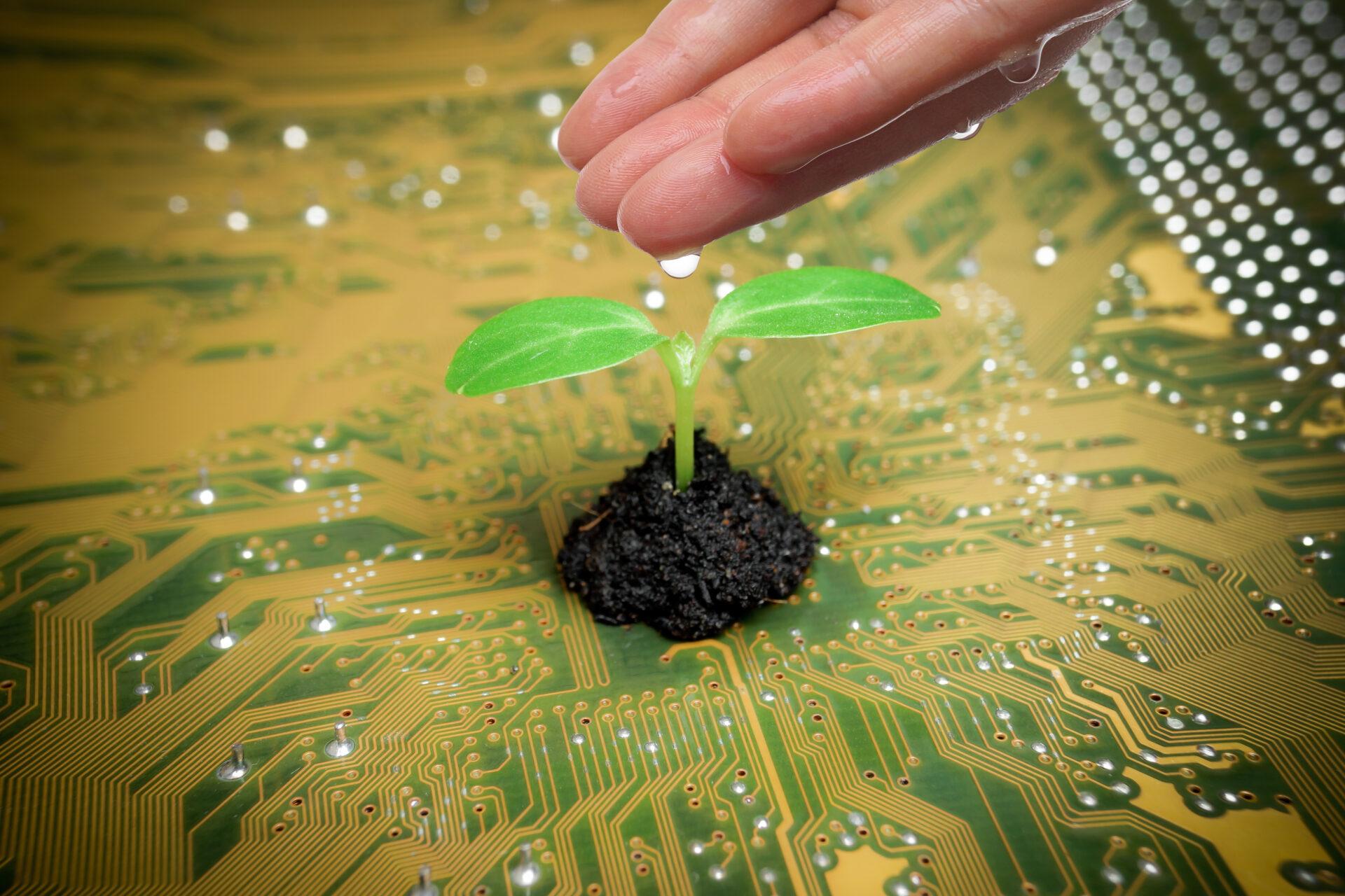 Digital green future
