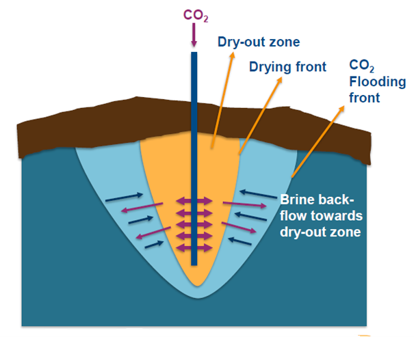 Sketch showing injected CO2 drying front and capillary brine back-flow.
